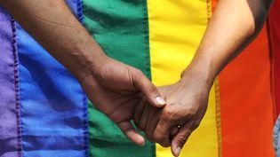 Deux homosexuels se tiennent la main lors d'une manifestation en faveur des droits LGBT, le 20 avril 2009 au Salvador. (JOSE CABEZAS / AFP)