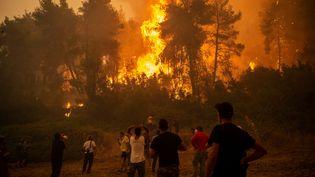 """""""C'est aux responsables politiques, économiques, et à chacun d'entre nous de changer radicalement"""" pour faire en sorte que les catastrophes climatiques telles que les incendies qui dévastent la Grèce en août 2021 ne se reproduisent pas, affirme l'ex-député LREM Mathieu Orphelin. (ANGELOS TZORTZINIS / AFP)"""
