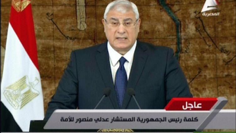 Le président égyptien par intérim Adly Mansour s'exprime à la télévision le 26 janvier 2014 au Caire (Egypte). ( EGYPTIAN TV / AFP)