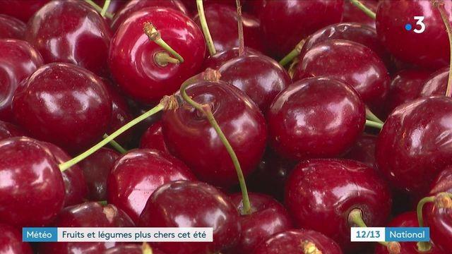 Météo : le gel du printemps a fait exploser les prix des fruits et légumes