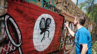 Un artiste recouvre un tag néonazi sur un mur à Berlin, le 11 mai 2016. (SOPHIA KEMBOWSKI / DPA)