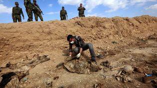 Un Irakien inspecteun charnier découvert à Sinuni, où des membresde la minorité yézidie ont été tués par des jihadistes de l'EI, le 3 février 2015. (SAFIN HAMED / AFP)