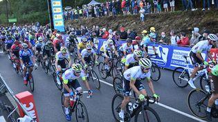 Le championnat de France 2020 de cyclisme sur route à Grand-Champ (Morbihan). (NICOLAS CREACH / MAXPPP)