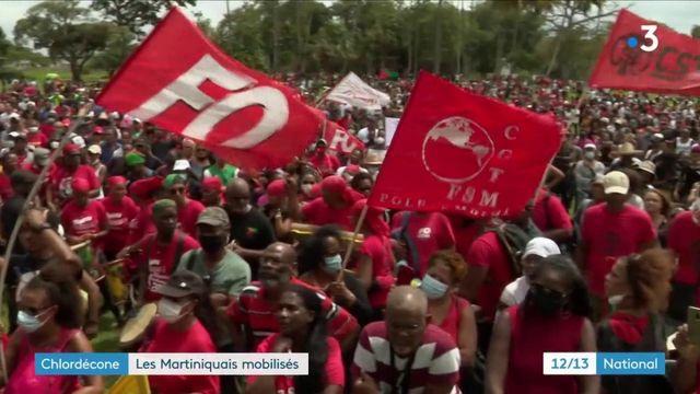 Chlordécone : les Martiniquais se mobilisent contre une possible prescription