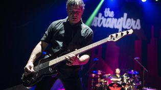 Jean-Jacques Burnel, bassiste du groupe The Stranglers (ZORAN VESELINOVIC / MAXPPP)