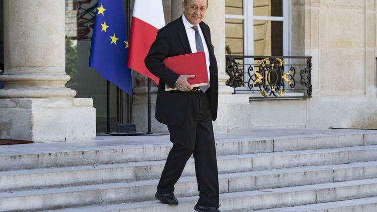 Le ministre de l'Europe et des Affaires étrangères, Jean-Yves Le Drian, sur les marches de l'Élysée le 3 août 2018. (GEOFFROY VAN DER HASSELT / AFP)