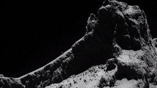 La comète Tchouri photographiée par la sonde Rosetta, vendredi 23 janvier 2015. ( FRANCE 2)