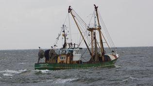 Un bateau de pêche néerlandais, le 4 septembre 2015. (TON KOENE / AFP)