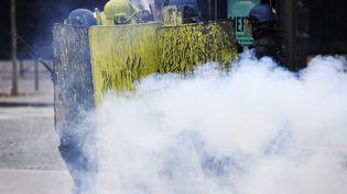 Les policiers anti-émeutes lors d'un affrontement avec des manifestants. (ALAIN JOCARD / AFP)