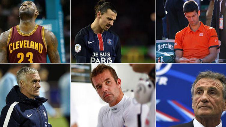 LeBron James (Cleveland), Zlatan Ibrahimovic (PSG), Novak Djokovic, Didier Dechamps, Sebastien Loeb, Guy Novès