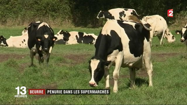Beurre : les supermarchés français font face à la pénurie