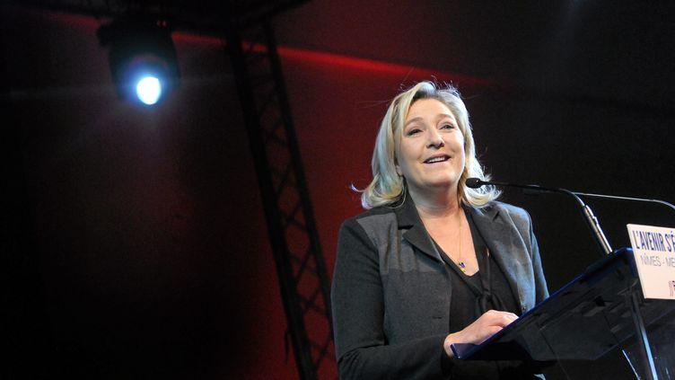 La présidente du FN, Marine Le Pen, lors d'un meeting à Nîmes (Gard), le 2 décembre 2015. (MAXPPP)