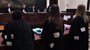 La cour siège le 5 juillet 2016, à Bruxelles (Belgique), pour l'énoncé dujugementde la cellule jihadiste de Verviers. (ERIC LALMAND / BELGA MAG / AFP)
