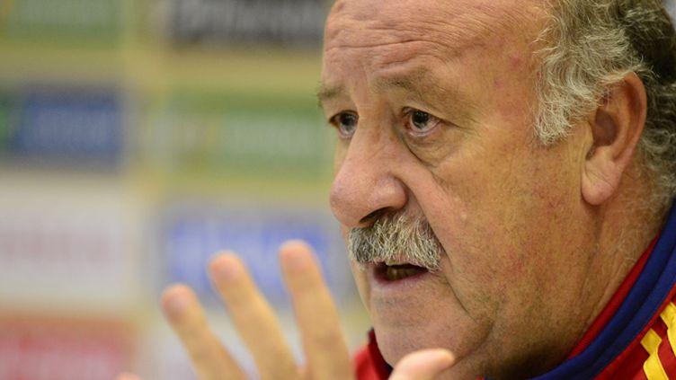 Le sélectionneur espagnol, Vicente Del Bosque
