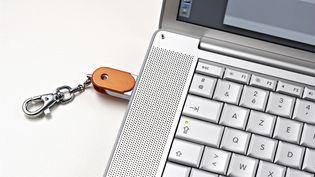 La NSA est capable d'espionner des ordinateurs ennemis ou alliés coupés d'internet. (J-C.& D. PRATT / AFP)