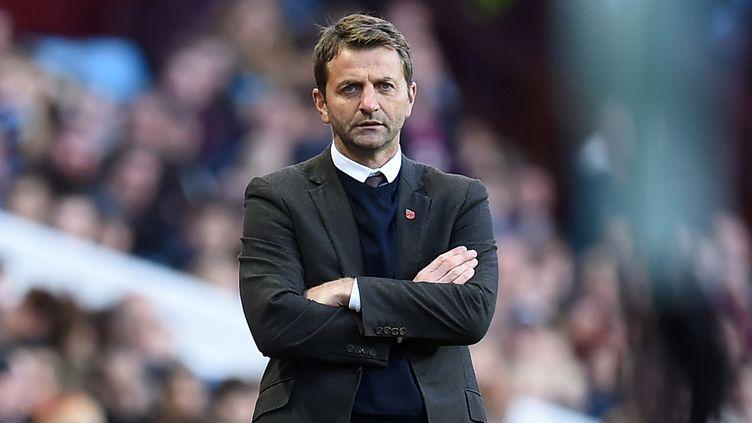 Tim Sherwood n'est plus l'entraîneur d'Aston Villa  (PAUL ELLIS / AFP)