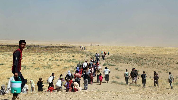 Des milliers de Yézidis fuient les combattants de l'Etat islamique à travers les monts Sinjar, dans le nord de l'Irak, le 9 août 2014. (EMRAH YORULMAZ / ANADOLU AGENCY / AFP)