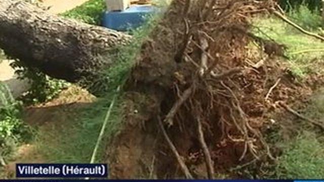 Intempéries : l'Hérault et la Charente-Marine fortement touchés