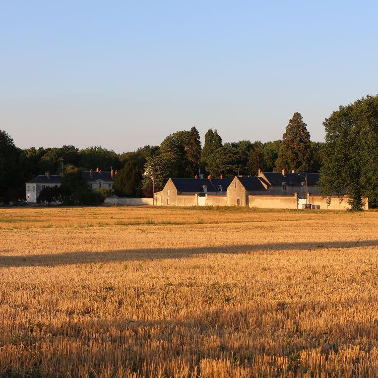 Le domaine du château de Pontourny à Beaumont-en-Véron (Indre-et-Loire- le 31 août 2016. (BENOIT ZAGDOUN / FRANCEINFO)