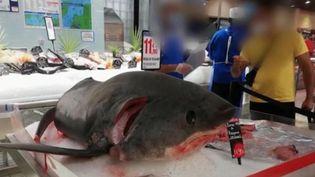 Environnement : l'image d'un requin-renard vendu dans un supermarché provoque un tollé (FRANCEINFO)