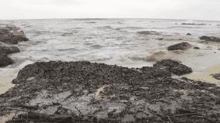 Des galettes de pétrole sur les plages du Var (CAPTURE ECRAN FRANCE 2)