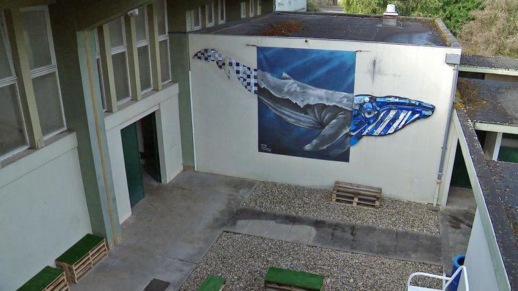 L'ancienne piscine municipale de Cognac transformée en galerie d'art (France 3 Nouvelle Aquitaine)