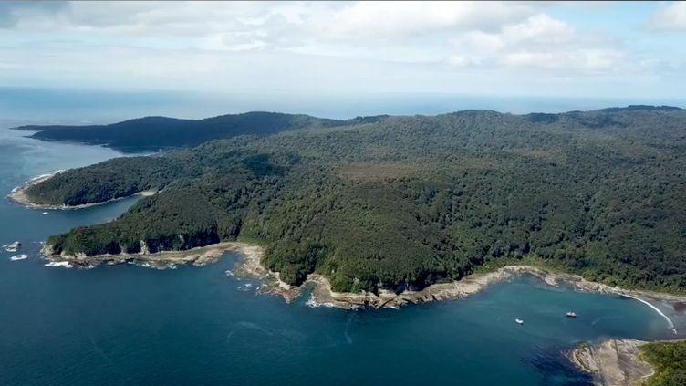 Image tirée d'une campagne duFonds mondial pour la nature (WWF) du Chili pour la défense de l'île de Guafo. (WWF CHILE)