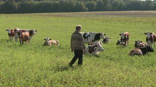 Agriculture : dix ans après sa conversion au bio, un producteur de lait triple son salaire. (FRANCE 2)