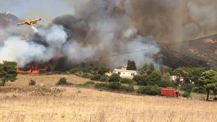 Incendie en Corse. (DR)