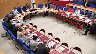 La commissiond'enquête sénatoriale sur l'affaire Benalla, le 30 juillet 2018. (ALAIN JOCARD / AFP)