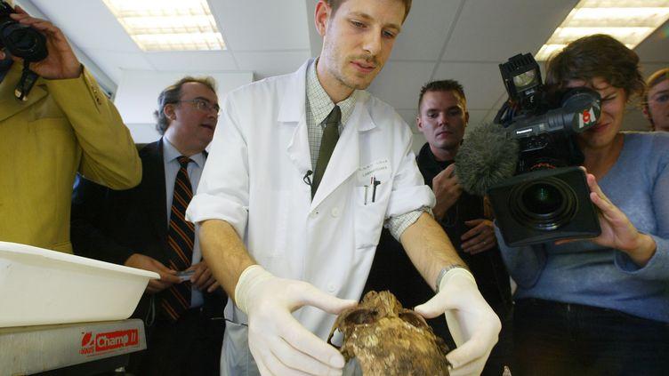 Le paléopathologiste Philippe Charlier travaille sur le crâne d'Agnès Sorel, maîtresse du roi Charles VII, le 29 septembre 2004 à Lille (Nord). (FRANCOIS LO PRESTI / AFP)