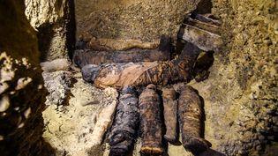 """Selon le ministère des Antiquités,il s'agissait d'un tombeau familial appartenant à """"la petite bourgeoisie"""" de l'époque ptolémaïque, du nom de la dernière dynastie pharaonique régnante, d'origine grecque, avant que l'Egypte ne passe sous domination romaine. La reine Cléopâtre en fut la dernière souveraine. (MOHAMED EL-SHAHED / AFP)"""