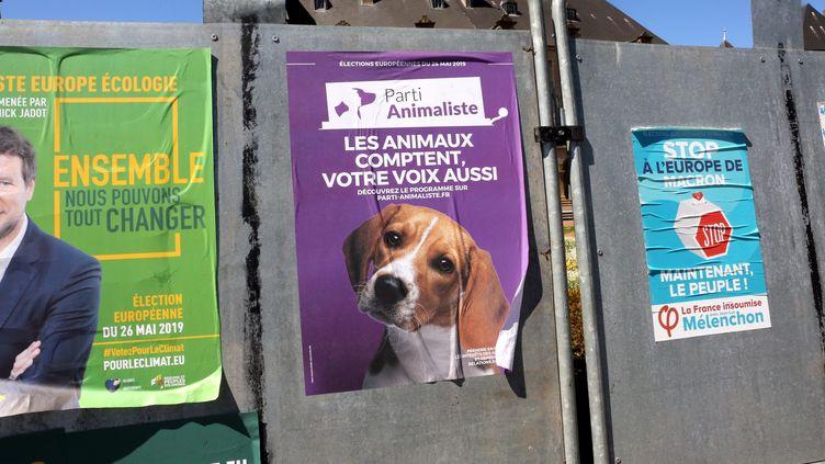 Une affiche du Parti animaliste pour les élections européennes, le 15 mai 2019, à Thionville (Moselle). (MAXPPP)