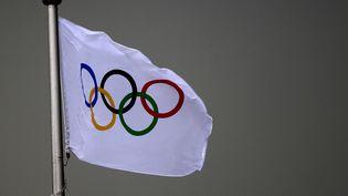 Le drapeau des Jeux olympiques, le 26 août 2014, à Nanjing en Chine. (KMSP / AFP)