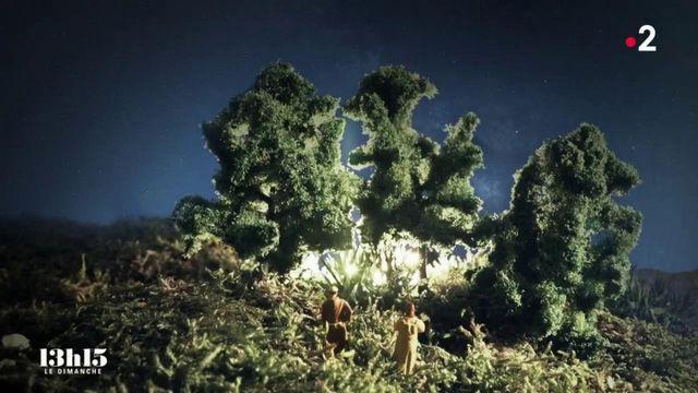 """VIDEO. """"Un ermite a vu des lumières étranges au-dessus d'un bosquet"""" : aux origines du pèlerinage de Saint-Jacques-de-Compostelle"""