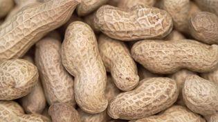 Faire consommer des aliments contenant des cacahuètes à des nourrissons réduit de 81% le risque qu'ils ne deviennent allergiques à cette arachide, selon une étude publiéele23 février 2015. (NOY / AFP)