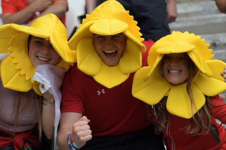 Les supporters gallois promèneront leurs jonquilles en quarts de finale. (GRIGORIY SISOEV / SPUTNIK / AFP)
