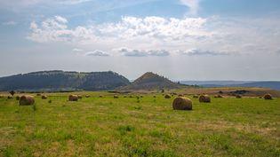 Des champs dans le sud de la Lozère, en août 2019. (BENJAMIN POLGE / HANS LUCAS / AFP)