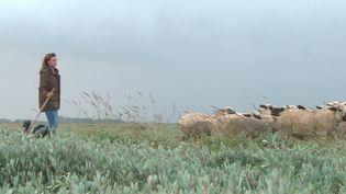 Rencontre avec Laure, bergère en Baie de Somme. (CAPTURE D'ÉCRAN FRANCE 3)