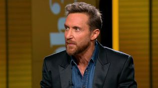 David Guetta au 20h de France2  (France 3 / Culturebox)