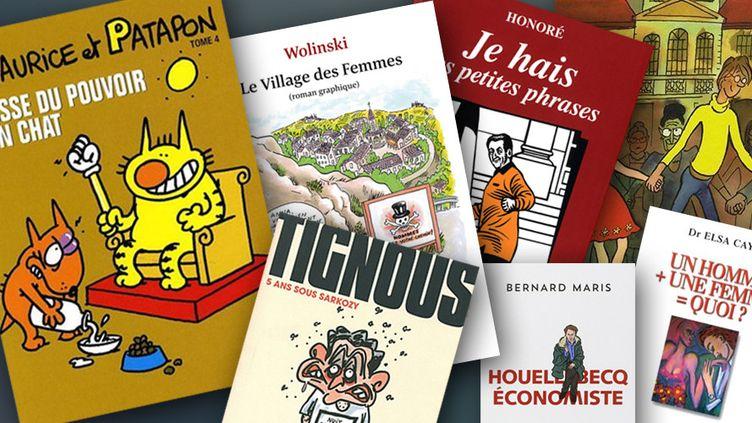 Charlie Hebdo, les livres