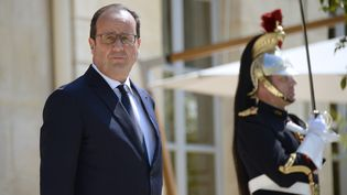 François Hollande à l'Elysée, à Paris, le 9 juin 2015. (BERTRAND GUAY / AFP)