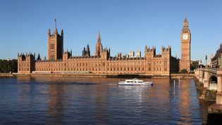 Le palais de Westminster, qui accueille la Chambre des lords, à Londres (Royaume-Uni). (MANUEL COHEN / AFP)