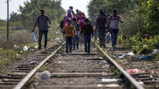 Des migrants marchent sur une voie ferrée près de la frontière entre la Serbie et la Hongrie, le 2 septembre 2015. (MARKO DJURICA / REUTERS)