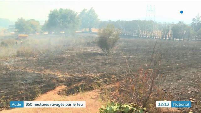 Aude : un incendie détruit 850 hectares de forêts