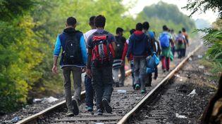 Des migrants marchent sur les rails à Roszke, à la frontière entre la Serbie etla Hongrie, le 24 août 2015. (ATTILA KISBENEDEK / AFP)
