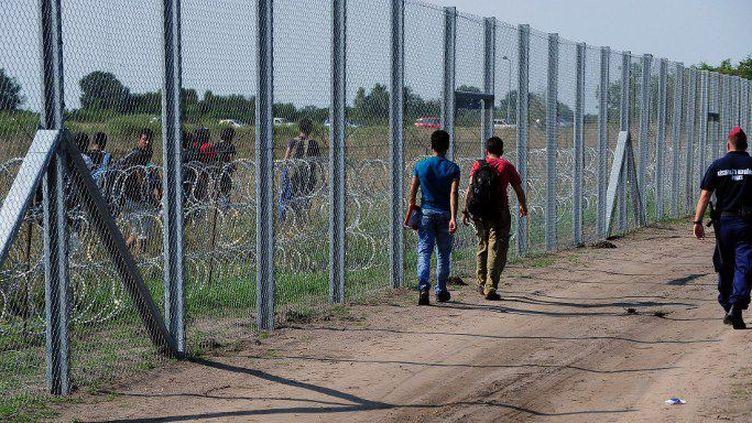 La frontière de barbelés entre la Hongrie et la Serbie érigée en 2015 pour bloquer le flux des migrants. (Attila Kisbenedeck/AFP)