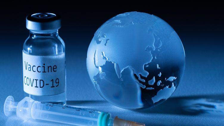 """Le président de la République souhaite """"une campagne de vaccination massive"""" en France, sans néanmoins rendre la vaccination obligatoire. (JOEL SAGET / AFP)"""