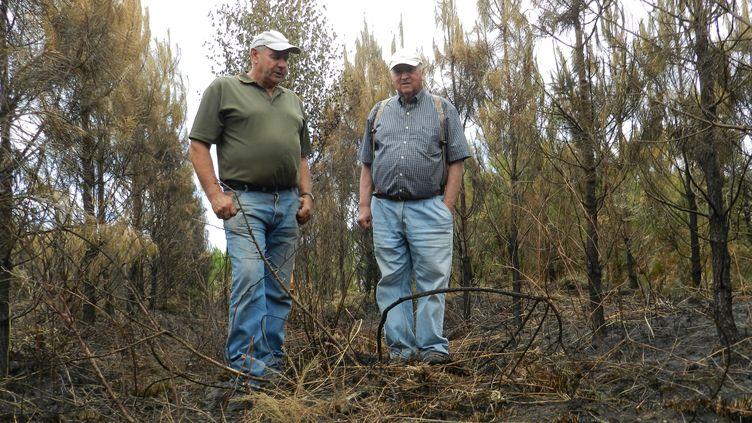 Patrick Maurin et Jean-Michel Landureau ont perdu plusieurs centaines d'hectares de forêt entre l'incendie de 2009 et celui de 2015. (ELISE LAMBERT / FRANCETV INFO)