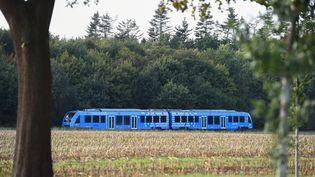 Le premier train à hydrogène au monde, conçu par Alstom, entre en service près de Bremervörde (Allemagne), le 16 septembre 2018. (PATRIK STOLLARZ / AFP)